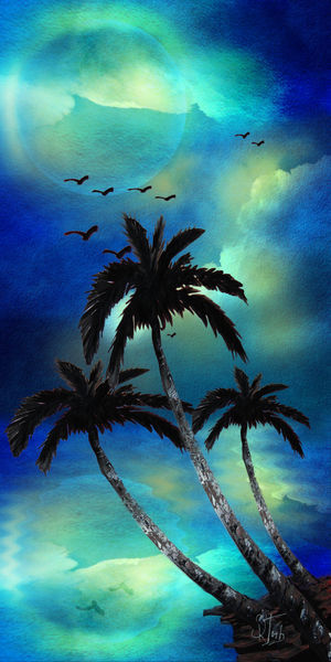 Tropical-night1