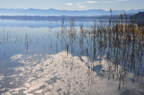 Starnberger See bei Bernried 2 by Frank Rother