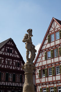 Fountain in Leonberg by safaribears
