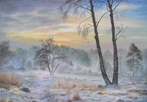 Snow Storm von Apostolescu  Sorin
