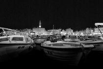 Rovigno-night