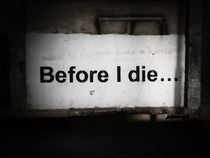 Before I die by Eva-Maria Steger