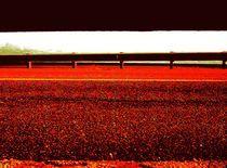 # 11 by hermes berrio
