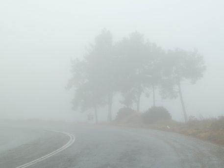 Fog-n-bike-1