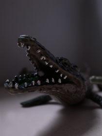 Beautiful Backgrounds: Toy Alligator von Eleanor-Jayne Browne