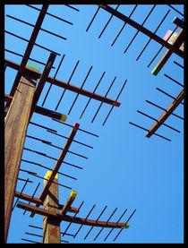 At sky by Tania Santos