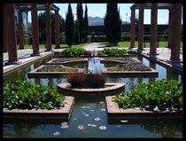 Roman Garden by Tania Santos