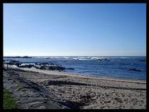 Winter beach von Tania Santos