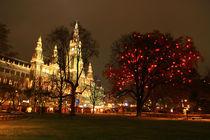 Christmas market in Vienna, Austria. by Nisa Maier