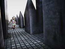 the holocaust redemption by Maria Victoria Anelli