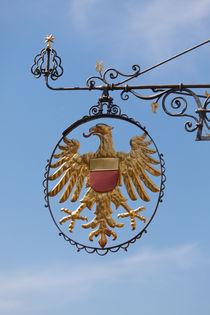 Goldener Adler von safaribears