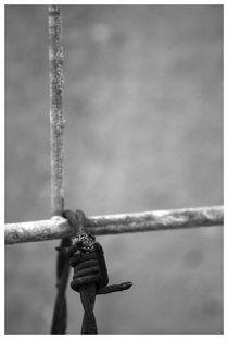 Barbed wire by Alexander Tenghamn