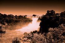 Iguazu National Park von Pedro Dominguez