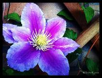 Flower-rack