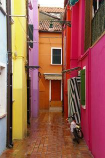 Colours of Burano by sjohanna