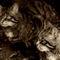 Scottish-wildcats-img-7159-sepia