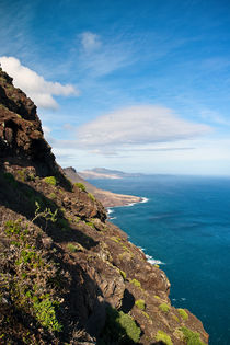 Coastal View by Amos Edana