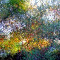 Ode to Monet von Kitsmumma Fine Art Photography