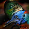Bunter-vogel