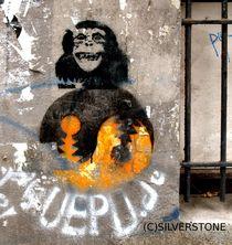 MONKEY by jan nils silverstone