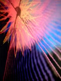 Sternenerscheinung 88 von Heide Pfannenschwarz