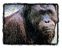 Gorilla graphic von Paul Segsworth