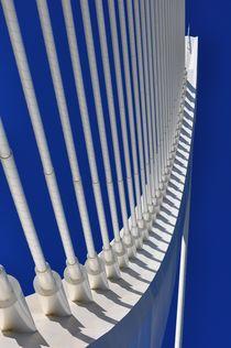 Valencia, Puente l'Assut 3 von Frank Rother