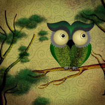 O-owl