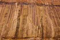 Desert Varnish by Barbara Magnuson & Larry Kimball