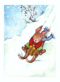 Schlitten fahren im Winter von Katja Kiefer