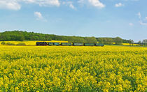 Eisenbahn im Frühling von Wolfgang Dufner