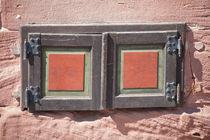 Tiny 'Window' by safaribears