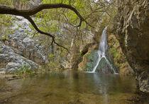 Darwin Falls by Barbara Magnuson & Larry Kimball