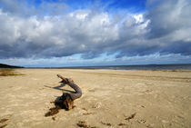 Strandgut von Jens Uhlenbusch