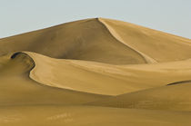 Dune by Barbara Magnuson & Larry Kimball