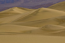 Death Valley sand dunes by Barbara Magnuson & Larry Kimball