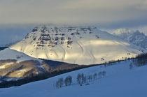 Rocky Mountain Winter by Barbara Magnuson & Larry Kimball