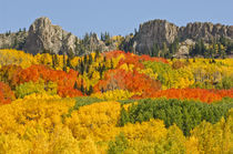 Ruby Range Autumn by Barbara Magnuson & Larry Kimball