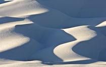Wintery Dunes von Barbara Magnuson & Larry Kimball
