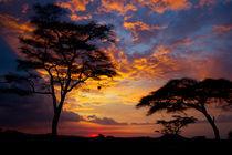 Serengeti Sunset von Víctor Bautista