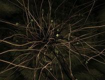 Wires  by Nabil Najm ElKhidrami