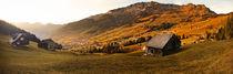 Switzerland von Anatoly Okrachkov