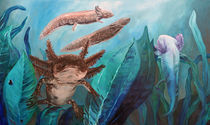 Axolotlwelt von Dorothee Rund