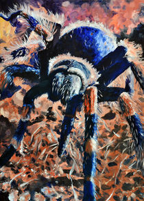 Mexikanische Rotknie Vogelspinne von Dorothee Rund