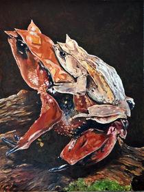 Zipfelfroschpärchen von Dorothee Rund