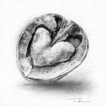 Nut. Open Heart von Anna  Zhuravel