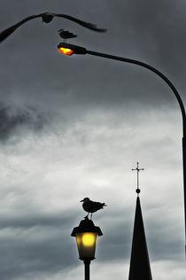 Reykjavik von Xaume Olleros