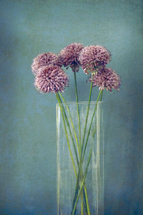 Still life by Anne Staub