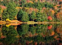 Autumn by Mihai Cîmpan