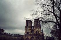 Notre Dame, Paris by luisgarciacraus